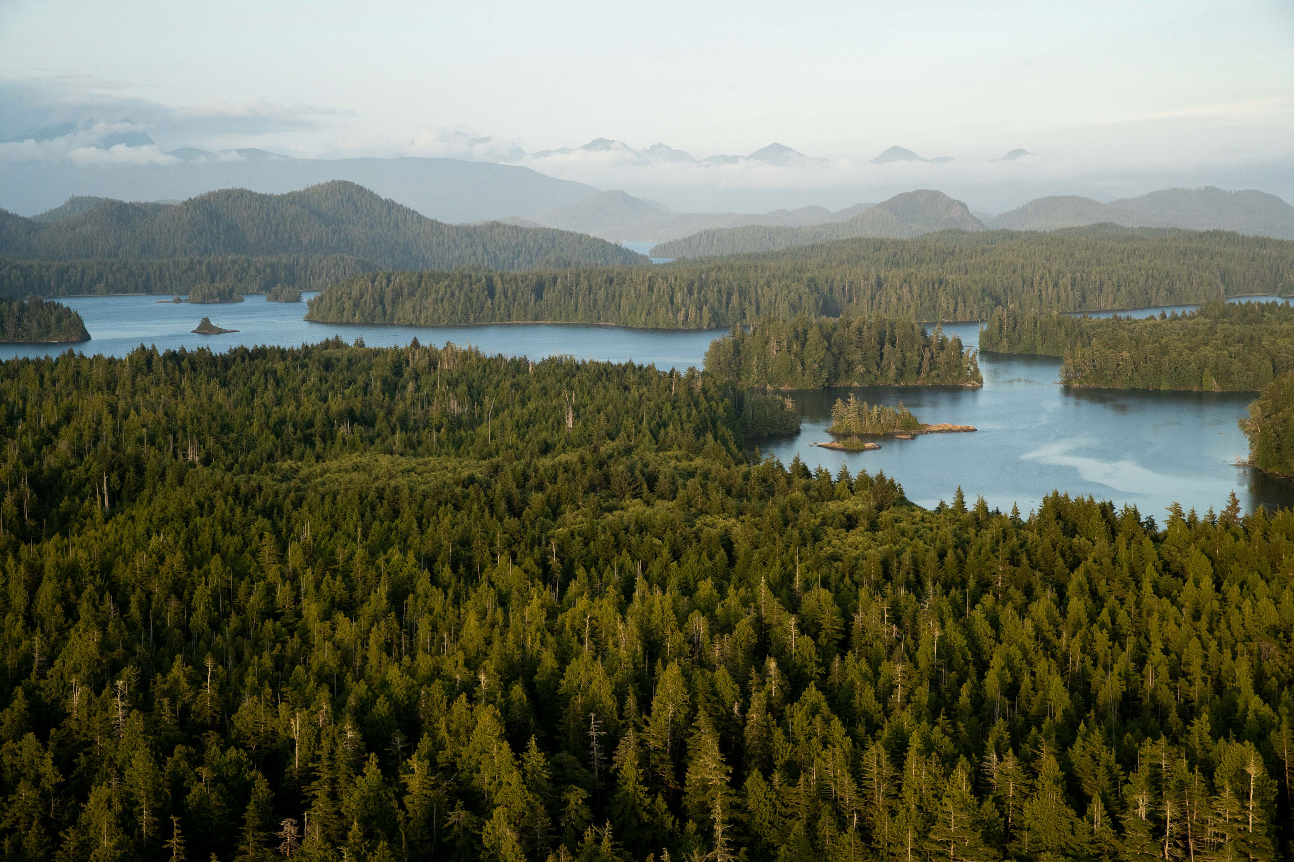Planning a trip this year? Beautiful Vancouver Island is the perfect destination.